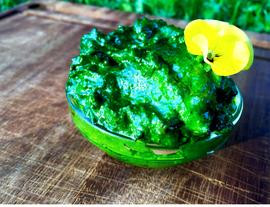 Garlic Mustard - Pesto